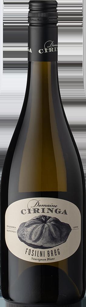 Sauvignon Blanc Fosilni Breg Reserve 2017